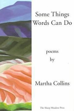 portada some things words can do [includes a history of small life on a windy planet, orig. pub. in 1993]