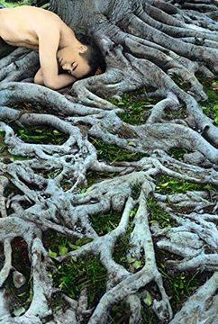 portada Youssef Nabil: Once Upon a Dream (libro en Inglés)