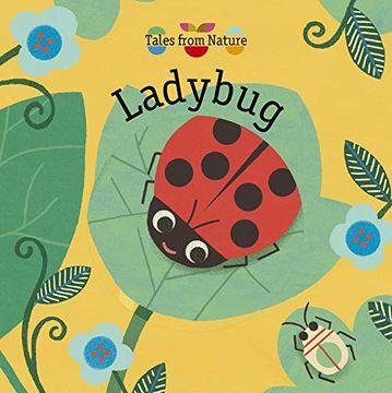 portada Tales From Nature: Ladybug (libro en Inglés)